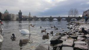 Cuentos de la Malá Strana en Praga