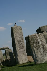 crow perched over stonehenge