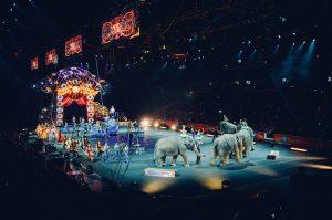 circo con elefantes